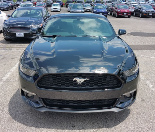 EcoBoost Mustang Stella front