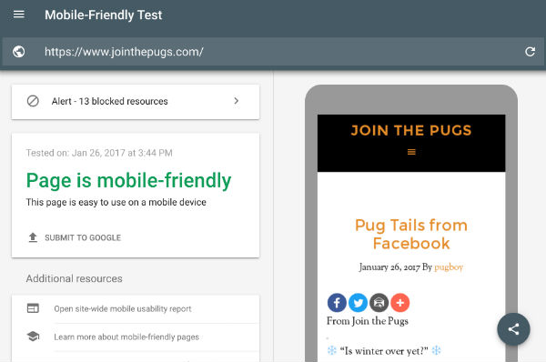 Google Mobile Friendly Test Site