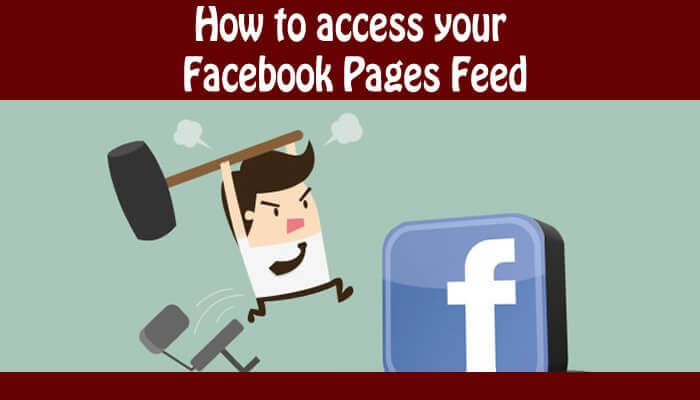 How to access your Facebook Pages Feed