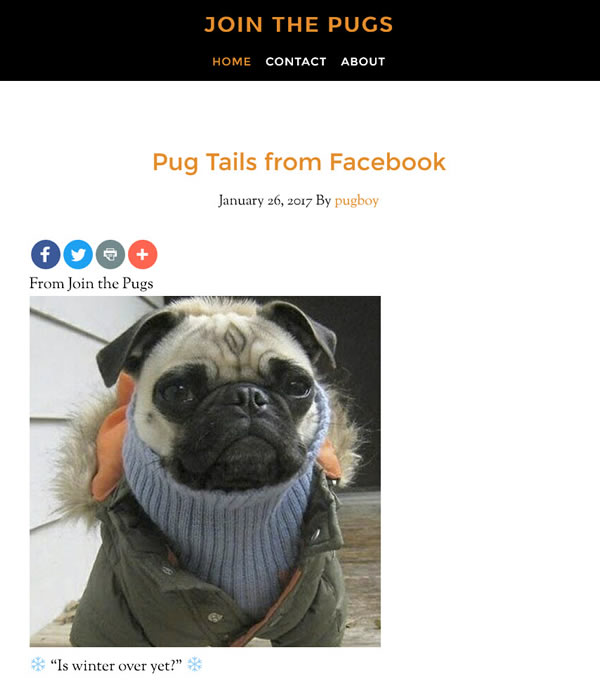 Join the Pugs mobile friendly Tablet version