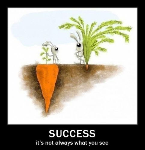 Success is Perception